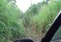Autofahrt nach Biliau - Teil 2